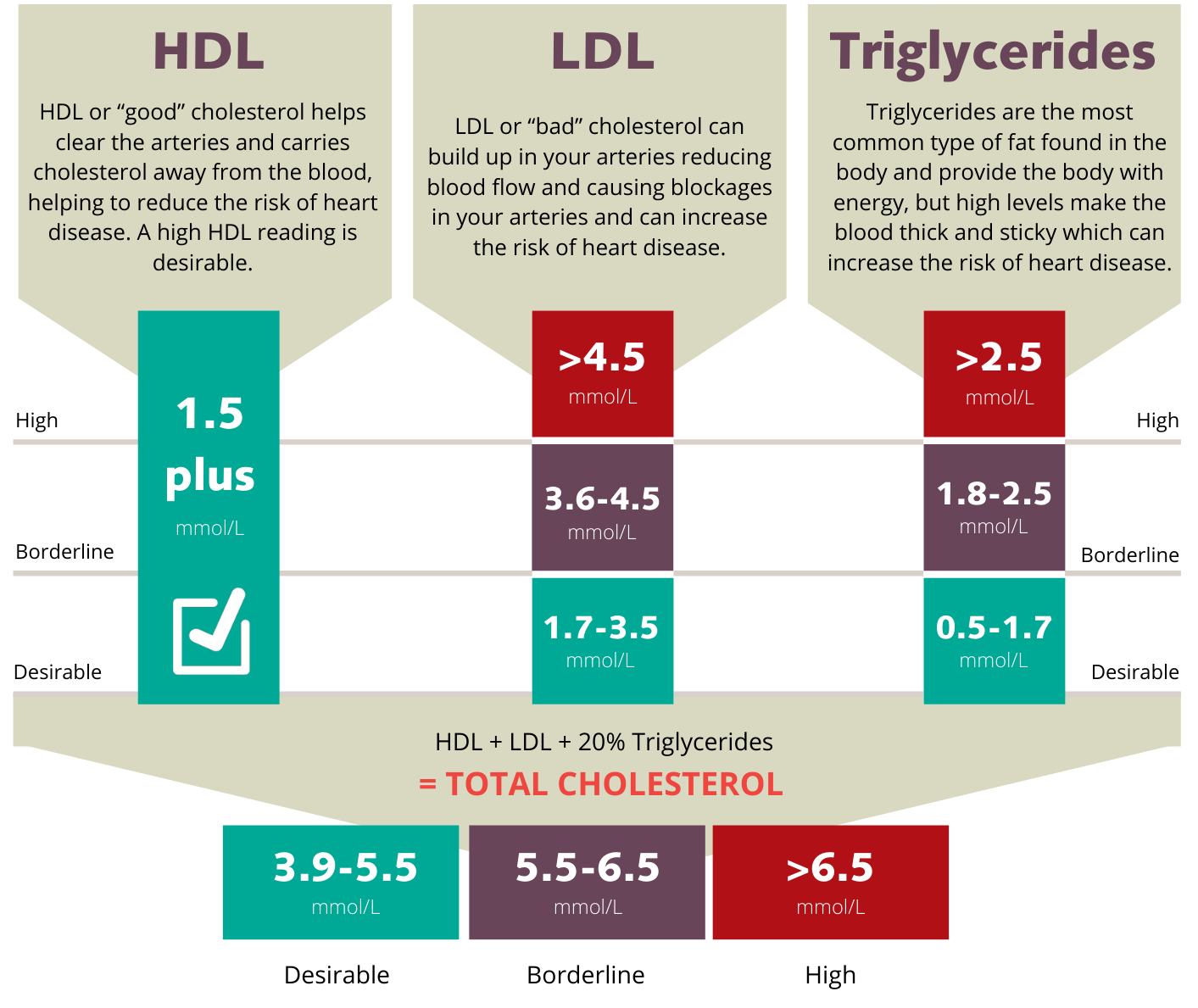 Guide - Understanding your cholesterol levels